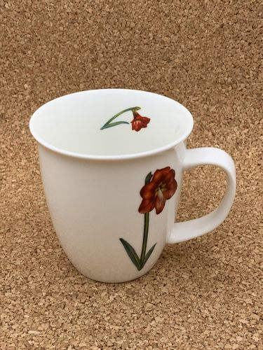 AM 551 / Amaryllis / New Bone China Becher 0,4L